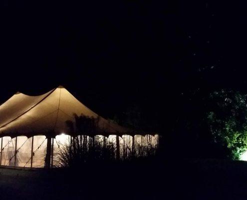 Petal Pole at Night